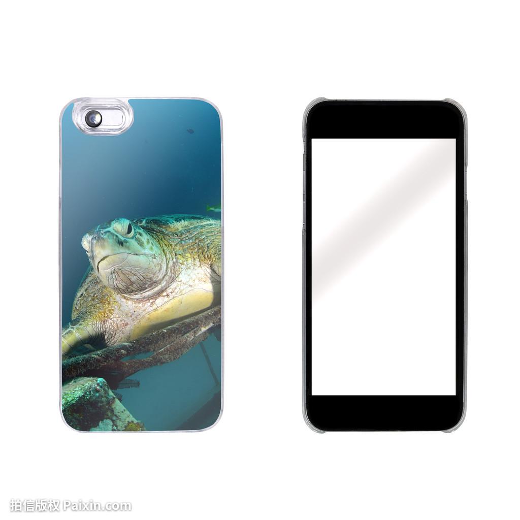 彩的,设计,设备,数字,盖,潜水,珊瑚的,通信,概念,推拉青花瓷u盘图片