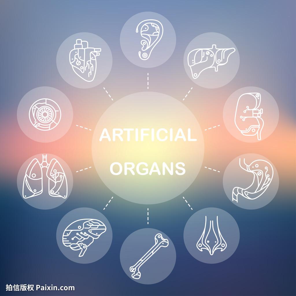 艺术的先进,按钮,人造器官,态度,骨,脑,蓝色,收集做室内设计的v艺术医学图片